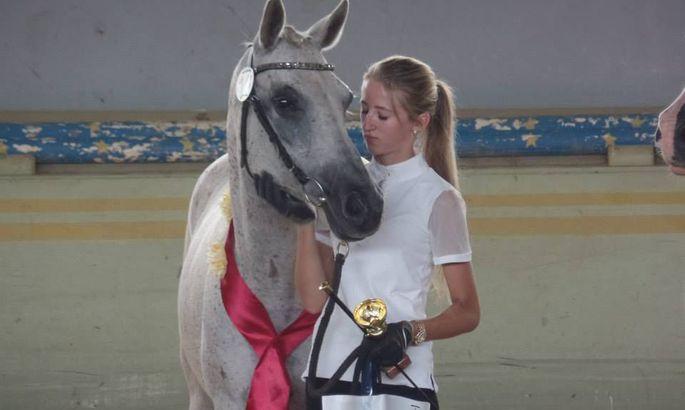 71f1482141c Araabia tõugu hobune Virginia ja Minni Mangman (Türi vald Kirna tall)