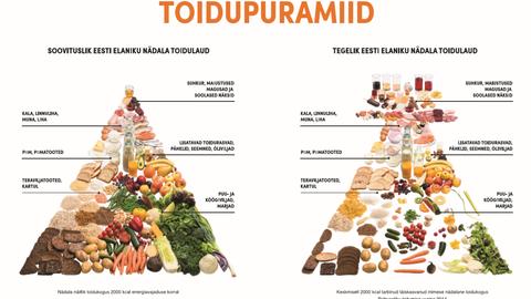 Soovituslik toidupüramiid võrdluses toitumusuuringu põhjal koostatud keskmise eestlase toidupüramiidiga.