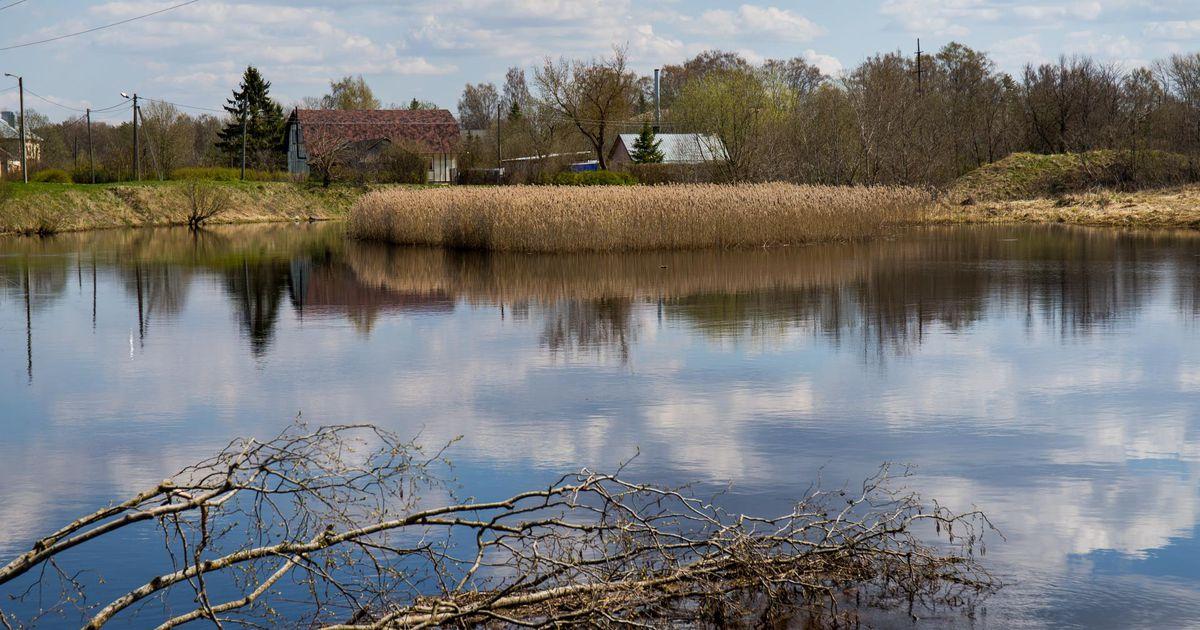 Eesti üks reostunumaid jõgesid puhastatakse ja muudetakse keskkonnale ohutuks