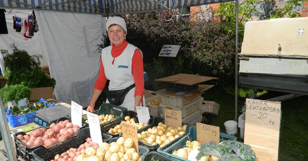 Maikuu külmalaine mõjutas värske kartuli saaki