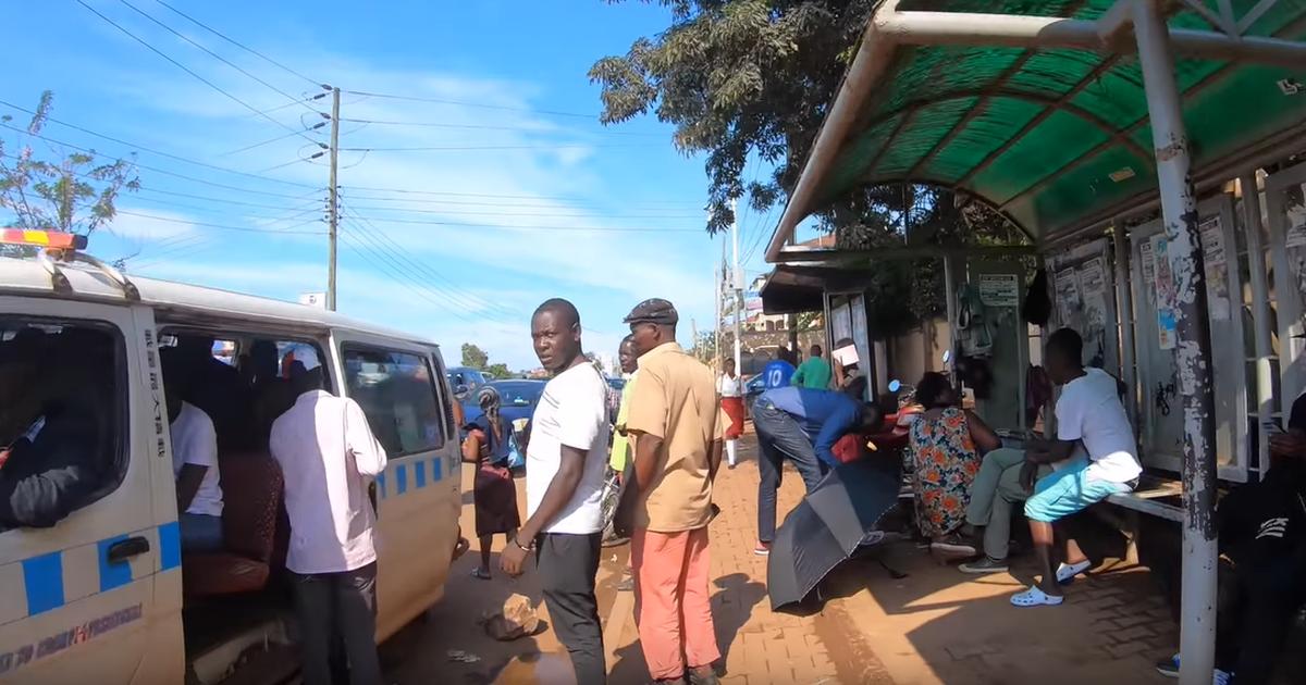 Uganda mehe puuks on nii «võimas», et see tapab isegi moskiitod