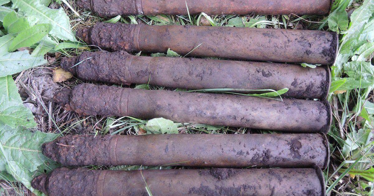 Mürske leiti nii metsast kui mullahunnikust