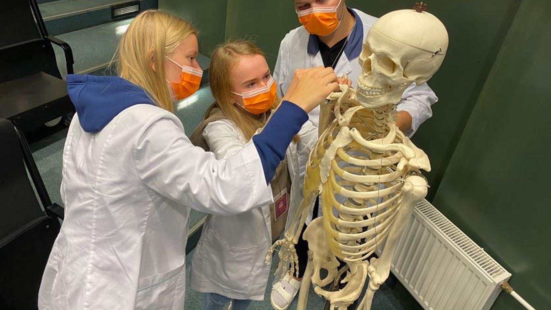 Arstitudengid panid proovile oma anatoomiateadmised: