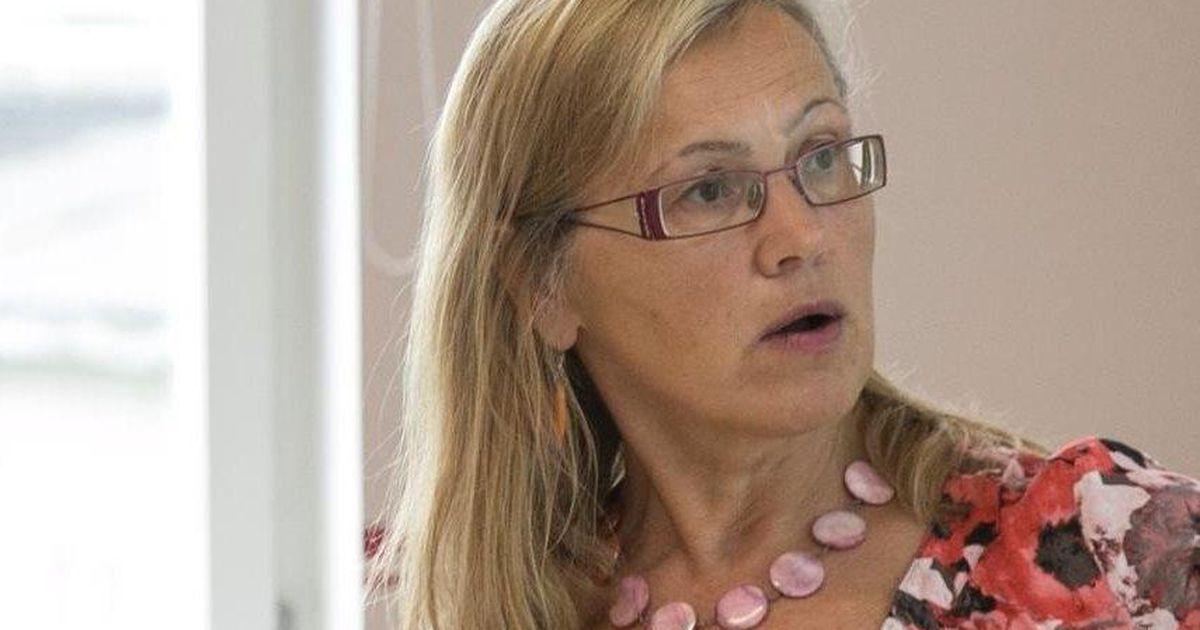 Keskerakonnad esitas Pärnu abilinnapea kandidaadi
