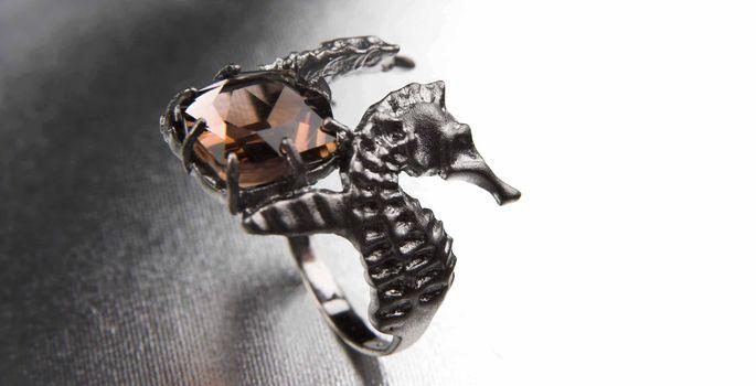 066df177f4c Tanel Veenre hõbesõrmused on inspireeritud tiivulisest merihobust ...